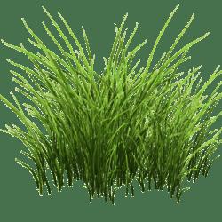 Grass Patch Small v2