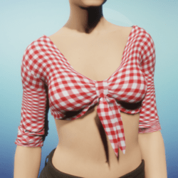 Red Gingham Tied Crop Top