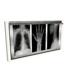 Scripted Xray Viewer