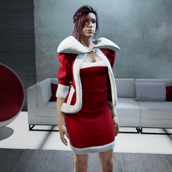 Christmas dress - Santa Claus