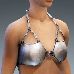 Top Bustier Silver Paint