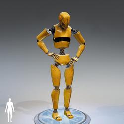 Robot Doe