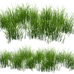 Grass Patch -Oval