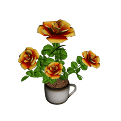 Roses in Coffee Cup - Orange