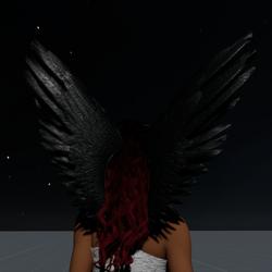Wings Black Female