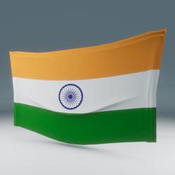 India Flag Wall Display