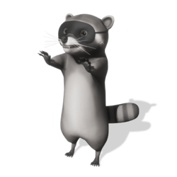 Raccoon (Mask) - Avatar