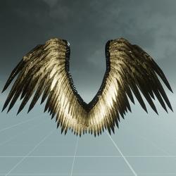 Male Black/Gold Angel Wings