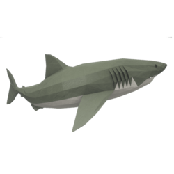 Upward Shark
