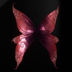 Fairy Wings Female