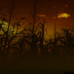 Skybox Gnarly Night