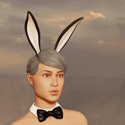 Sexy Bunny Ears - Up - Dark Grey