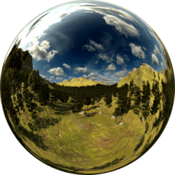 Pine Forest Top Skybox