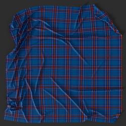 Tartan Picnic Blanket 03