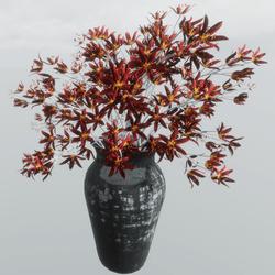 Red Flower + Vase