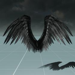 Male Black Angel Wings