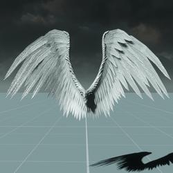 Male White Angel Wings