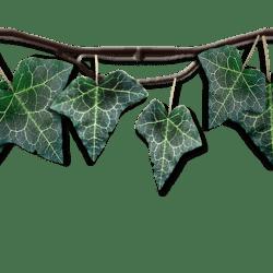 Dark Green Hanging Ivy Link
