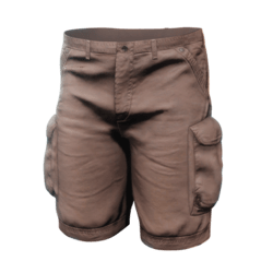 Cargo Shorts Brown - Male (Update 3)