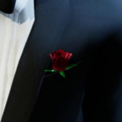Tuxedo Rose