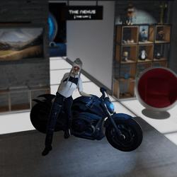 Motorcycle idle pose