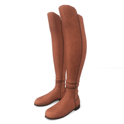 AV 2.0   Female winter boots - Brown