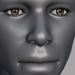 Men Eyes - Brown