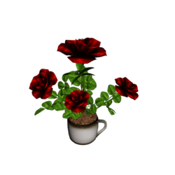 Roses in Coffee Cup - Bloody Red 2