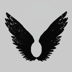 Wings Petrol Female