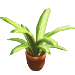 Yippy Potted plant