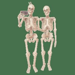 Skeleton Selfie anim