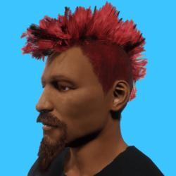 PankHair_Red