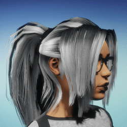 Ponytail Hair 2.0