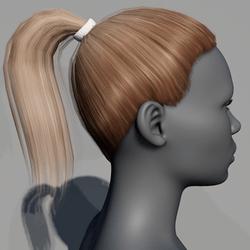 Hair - Pony Tail - Dark Blonde Mocha