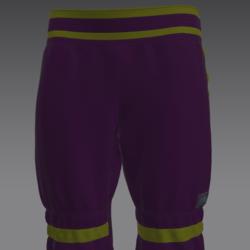 Arr pants violet