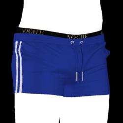 Athletic Shorts - Blue