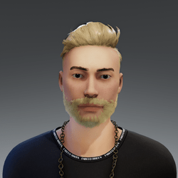 Beard blond rigged