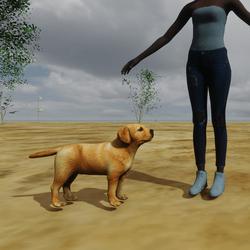 Dog Puppie