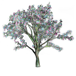 Watercolor Multi Hue Oak Tree
